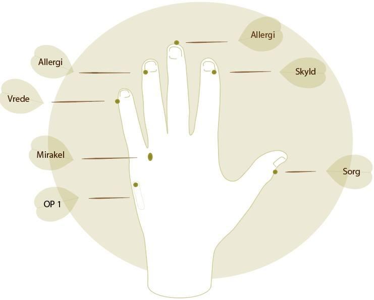 hånd4